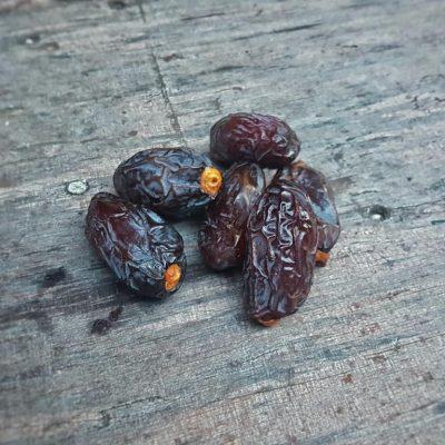 עידן הפרי - פירות מיובשים טבעיים - תמר