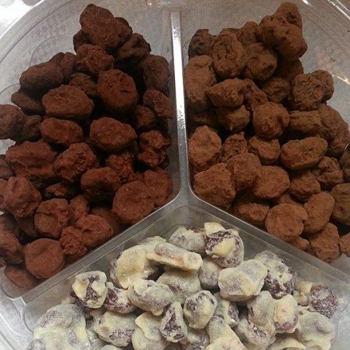 עידן-הפרי---פינוקי-שוקולד---חמוציות-מיקס-שוקולדים